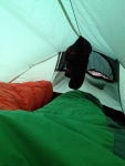 A view from inside the tent.